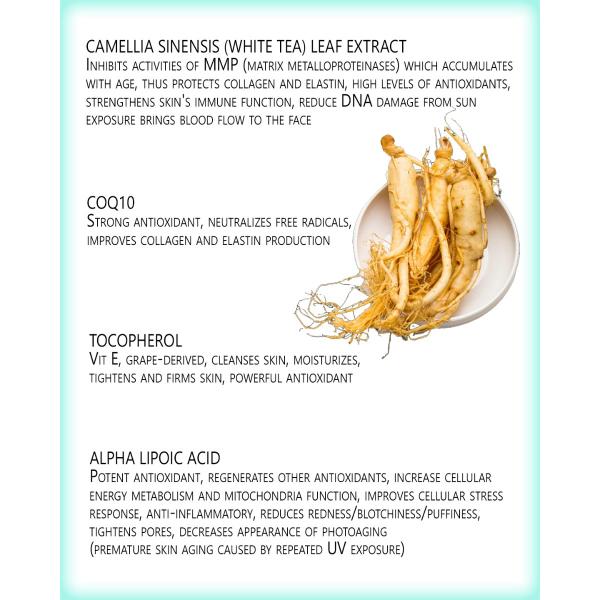 CharaOmni Stem Cell Regenerative Cream 50ml